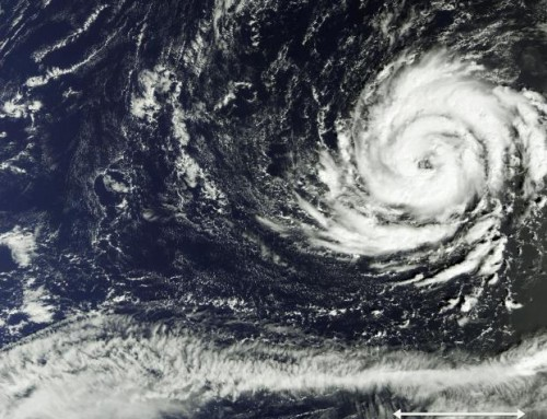 Tropical Storm Ophelia Update: museum closure