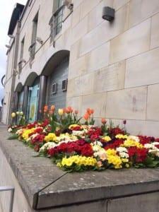 Lisburn Museum Spring