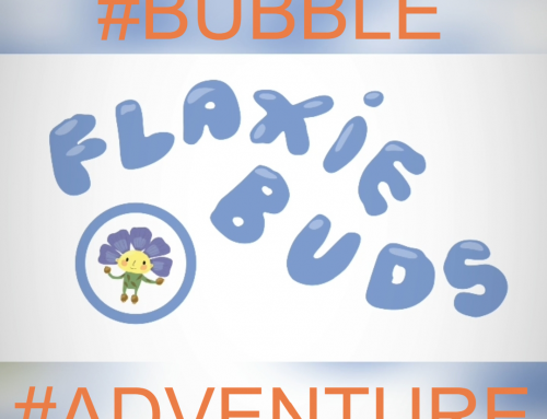 Flaxie Adventure: Up the Lagan in a Bubble