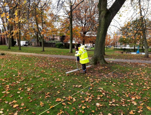 Castle Gardens Geophysical Survey, November 2020